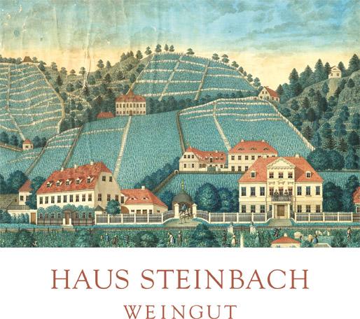 signet_haus-steinbach_CMYK_2